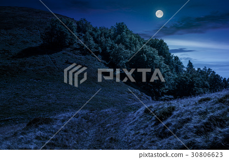 path through forest on hillside meadow at night 30806623