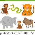 animals, cartoon, character 30808051