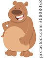 bear cartoon animal 30808058