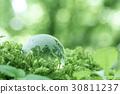 eco, ecology, globe 30811237