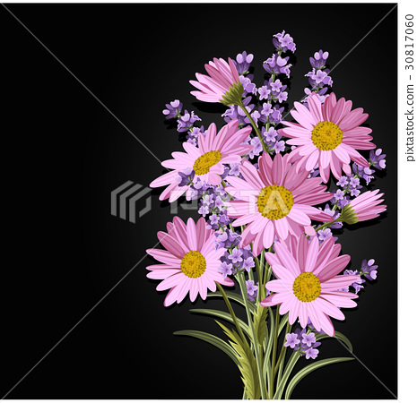 Beautiful daisies and lavender flowers 30817060