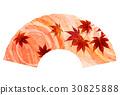 枫树 枫叶 红枫 30825888