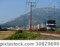 EF 210 - 333 Container freight train 30829690