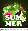 Decorative summer background 30841509