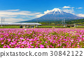 Shinkanzen or Bullet train with Mt. Fuji 30842122