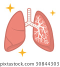 Lung health 30844303