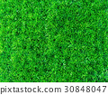 Artificial grass 30848047