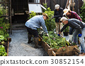 Group of people gardening backyard together 30852154