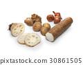 감자, 마, 생강 30861505