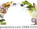 靜物 蔬菜 白 30861550