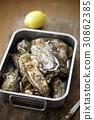 牡蠣 生 在我看來 30862385