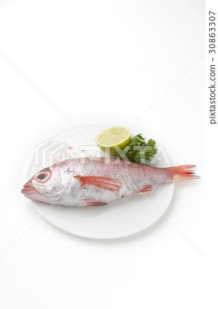 도미,라임,소금,접시 30863307