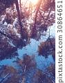 sky, tree, top 30864651