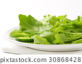 沙拉 色拉 芝麻菜 30868428