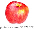 鮮豔 細緻으로 手繪 수채화 畫插 圖在 백색 배경 : 水果 蘋果 30871822