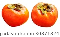 鮮豔 細緻으로 手繪 수채화 畫插 圖在 백색 배경 : 水果 방명록, 甜柿 30871824