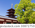 shitenno-ji temple, temple, temples 30872750