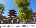 shitenno-ji temple, osaka city, osaka prefecture 30872751