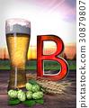 beer barley hop 30879807