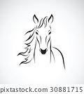 Vector of a horse on white background. 30881715