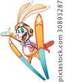 動物 兔子 兔 30893287