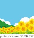 向日葵風景例證 30894852