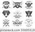 Set of cricket sports logo designs. icons 30895019