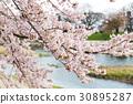 鴨川 京都 日本 30895287
