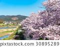 鴨川 京都 日本 30895289