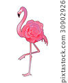 vector graphic pink 30902926