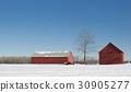 midwinter, snow, snowy 30905277