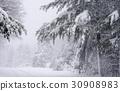 midwinter, snow, snowy 30908983