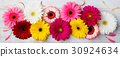 Colorful gerbera flowers White wooden background. 30924634