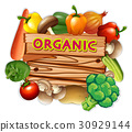 Organic sign with fresh vegetables 30929144
