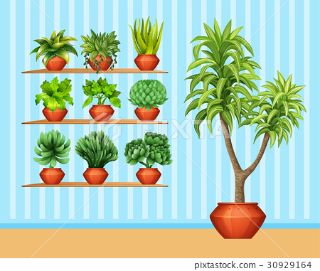 Gardening set with many plants in pots 30929164