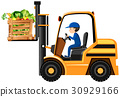 Man lifting bucket of vegetables with forklift 30929166