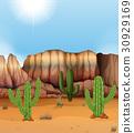 sky cactus desert 30929169
