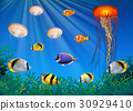 Sea animals swimming under the sea 30929410