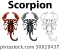 Doodle character for scorpion 30929437