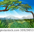 Nature scene with trees on mountains 30929653