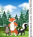 Forest scene with wild animals 30929656