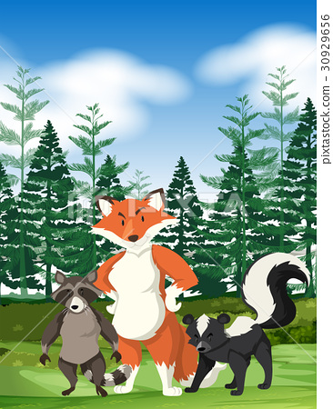 Forest scene with wild animals 30929656