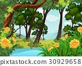scene environment forest 30929658