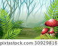 Forest scene with fog on the grass 30929816