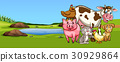 Many types of animal on farmyard 30929864