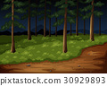 Forest scene with trees and trail at night 30929893