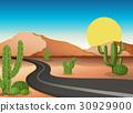 Desert ground with empty road 30929900