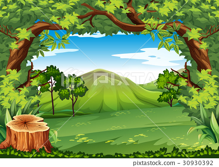 Mountain scene with green trees 30930392