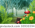 Forest scene with trees and flowers 30930394