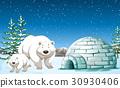 Polar bears standing near igloo at night 30930406